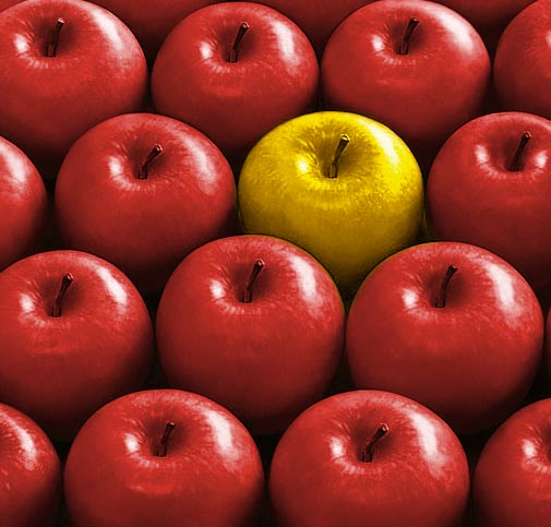 Stand Out From The Crowd – The Yellow Apple Story